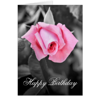 Beautiful pink rose Happy Birthday congratulations Card