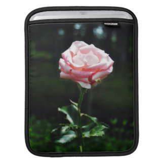 Beautiful Pink Rose iPad Sleeve