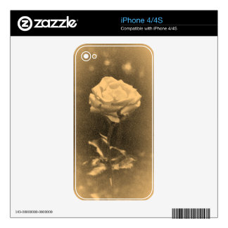 Beautiful Pink Rose Old Photo Skins For iPhone 4S