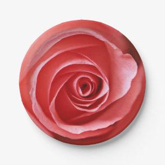 Beautiful Pink Rose Paper Plate