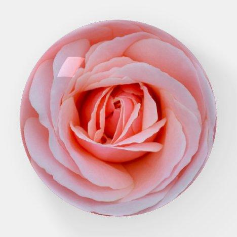 Beautiful pink rose paperweight