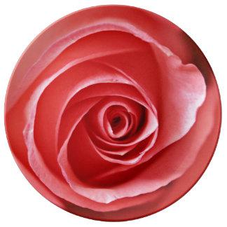 Beautiful Pink Rose Plate