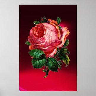 BEAUTIFUL PINK ROSE PRINT