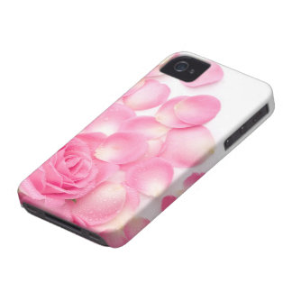 Beautiful Pink Rose with Scattered Petals iPhone 4 Case