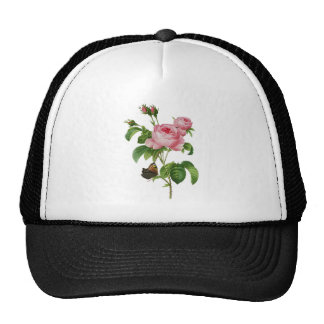 Beautiful Pink Roses with Butterfly Trucker Hat