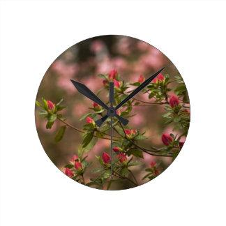 Beautiful Pink Spring Blooming Azaleas Pentanthera Round Clocks