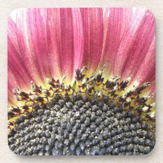 Beautiful Pink Sunflower Cork Coaster