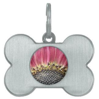 Beautiful Pink Sunflower Pet Tag