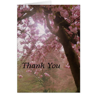 Beautiful Pink Tree Blossom Thank You Card