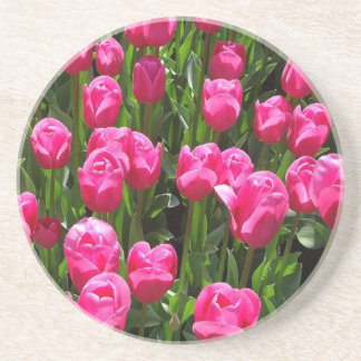 BEAUTIFUL PINK TULIPS COASTER