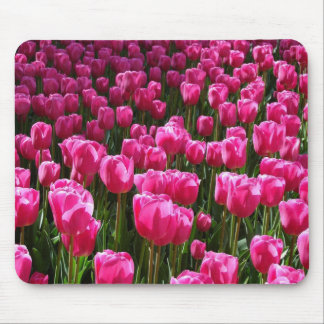 Beautiful Pink Tulips Mouse Pad