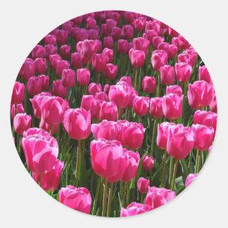 Beautiful Pink Tulips Round Sticker