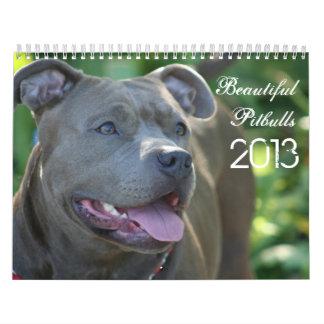 Beautiful Pitbulls 2013 Dog Calendar
