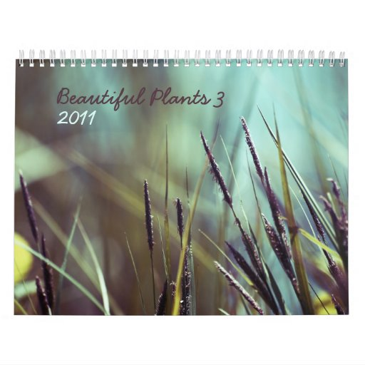 Beautiful plants 3 - 2011 calendar