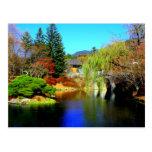 Beautiful Pond Postcards
