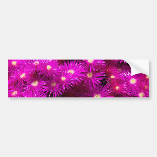 Beautiful Pretty Purple Flowers Custom Gifts Bumper Sticker