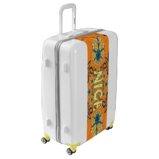 Beautiful Pretty Unique Exceptional  Colorful Nice Luggage