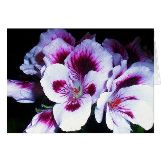 Beautiful Primrose Card
