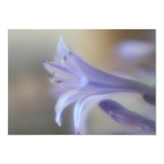 "Beautiful Purple Agapanthas Petals Invitation 5"" X 7"" Invitation Card"