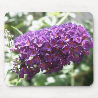 Beautiful Purple Buddleia Flowers Mousepad