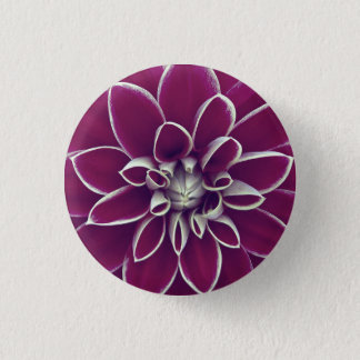 Beautiful purple dahlia flower blossom pinback button