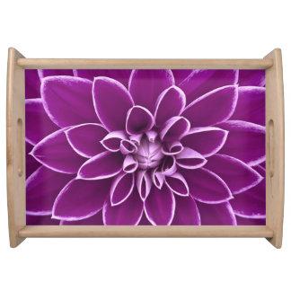 Beautiful purple dahlia flower serving trays