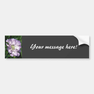 Beautiful Purple Flower Car Bumper Sticker