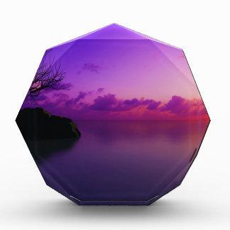 beautiful purple landscape acrylic award