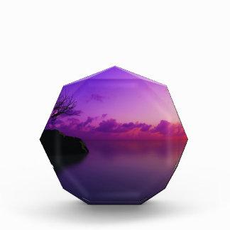beautiful purple landscape award