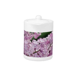 Beautiful purple lilac flowers print