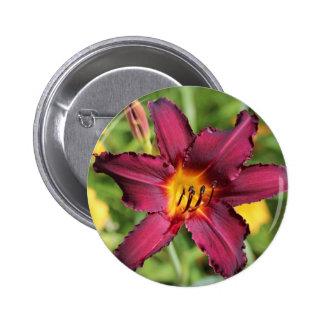 Beautiful purple lily flower pinback buttons
