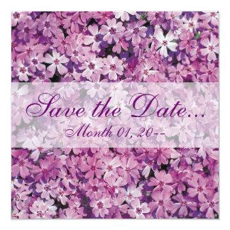 Beautiful Purple Phlox Flower Announcements