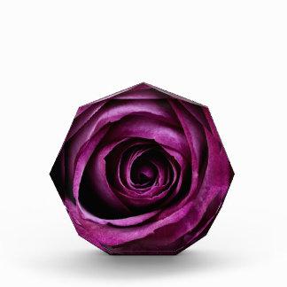 Beautiful Purple Rose Flower Petals Girly Gifts Acrylic Award