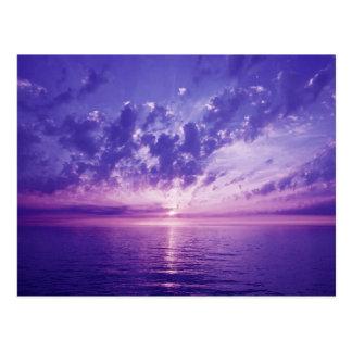 Beautiful purple sunset postcard