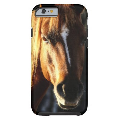 Beautiful Quarter-horse Pony Portrait Tough iPhone 6 Case