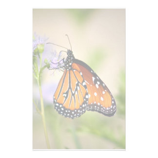 Beautiful Queen Butterfly Stationery