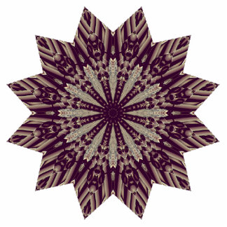 Beautiful Radiating Star Cutout