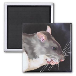Beautiful Rat Painting Magnet