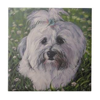 Beautiful Realistic Havanese Dog Art Painting Tile