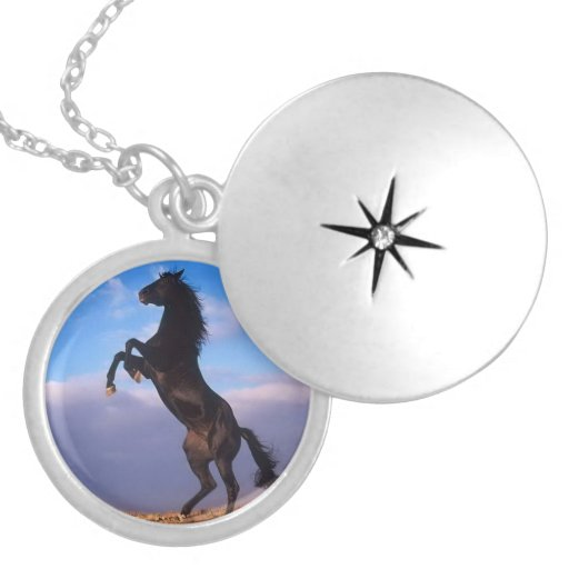Beautiful rearing black horse with blue sky photo pendants
