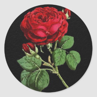 Beautiful Red Abstract Texture Rose Classic Round Sticker