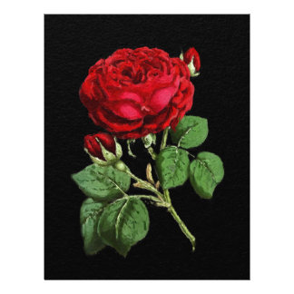 Beautiful Red Abstract Texture Rose Letterhead