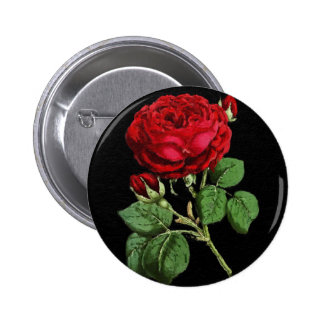 Beautiful Red Abstract Texture Rose Pinback Button