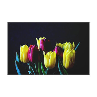 beautiful red and yellow tulips on blue canvas print