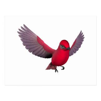 Beautiful Red Bird Postcard