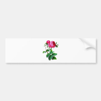 Beautiful Red Cabbage Roses by Redoute Bumper Sticker
