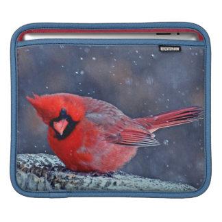 BEAUTIFUL RED CARDINAL BIRD WINTER IPAD SLEEVE