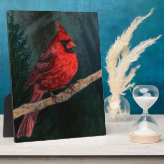 Beautiful Red Cardinal In The Wild Display Plaques