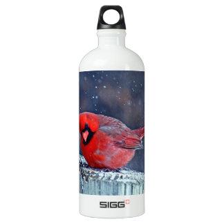 BEAUTIFUL RED CARDINAL PUFFY BIRD IN WINTER  BOTTL WATER BOTTLE