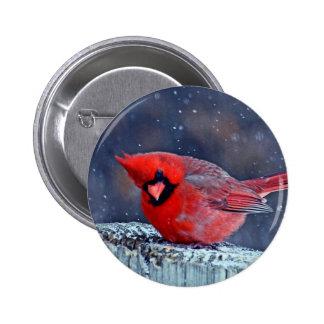 BEAUTIFUL RED CARDINAL PUFFY BIRD IN WINTER BUTTON